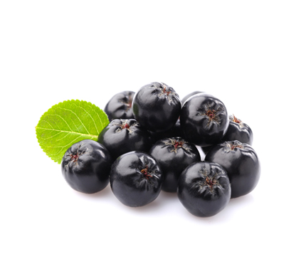 Uber Foods - Certified Organic Fresh Aronia Berries